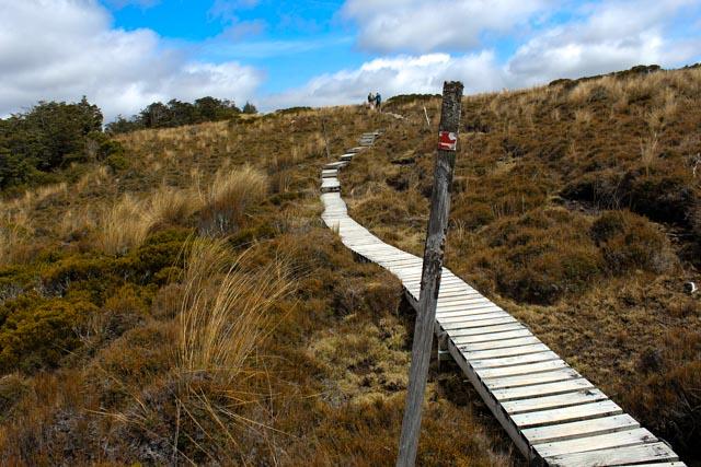 Vi reiser med tog, men vil også ut og gå. Her i Tongariro nasjonalpark er det godt tilrettelagt for fotturer.