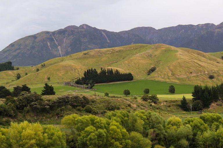 For en utsikt vi hadde hele den dagen vi reiste med turisttoget Coastal Pacific på New Zealand.