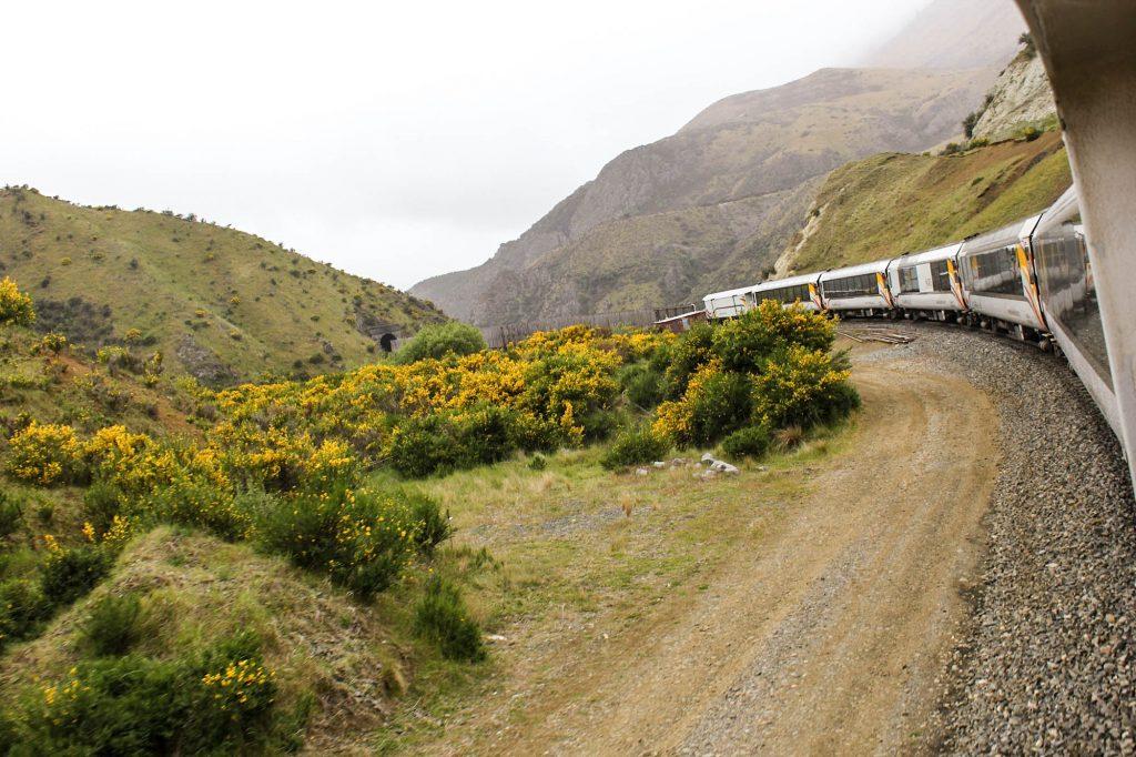 Bildet er tatt på en reise med Tranz Alpine på New Zealand, og illustrerer gleden med å reise med tog.