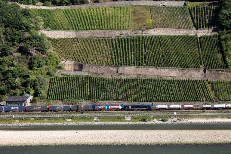 Dagens tema langs Rhinen: Vinmarker, tog og elv.