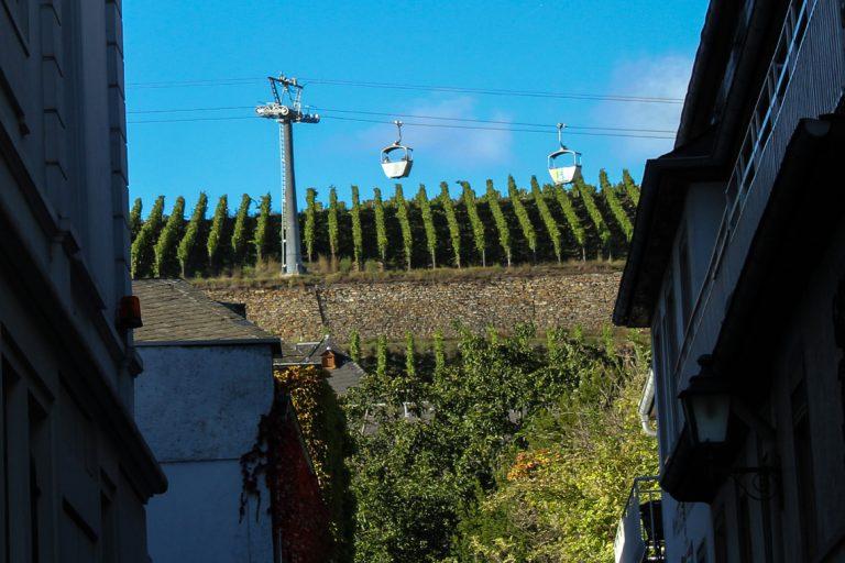 Vinrankene vokser helt ned i gatene her i Rüdesheim.