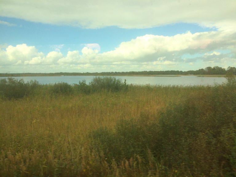 Utsikt til nederlandsk natur fra togvinduet.