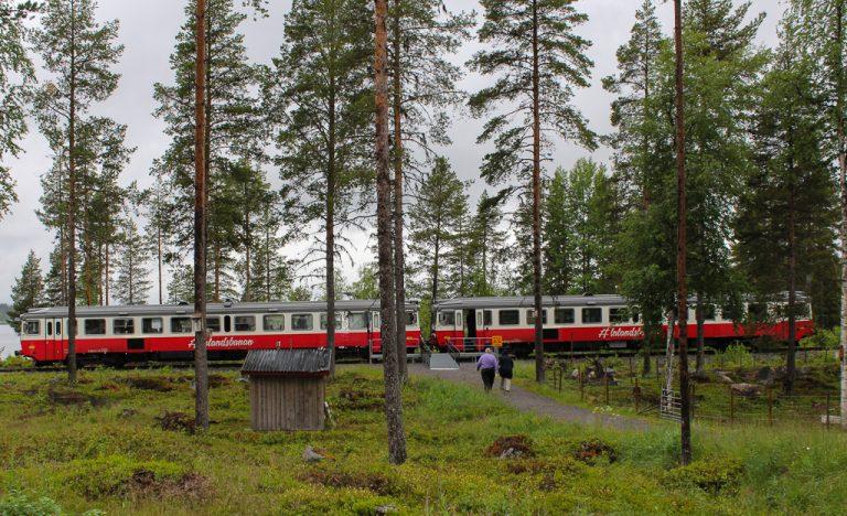 Inlandsbanan - i skogen.