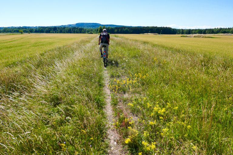 """På sykkel mot """"det blommande berget"""", Kinnekullen. Et godt minne fra 2018 da vi tok sommerferie på sparket."""