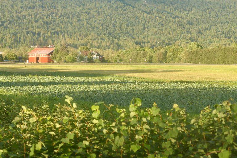 Landskapet skifter utenfor vinduene til et musuemstog, på rundtur med Historiske togreiser.