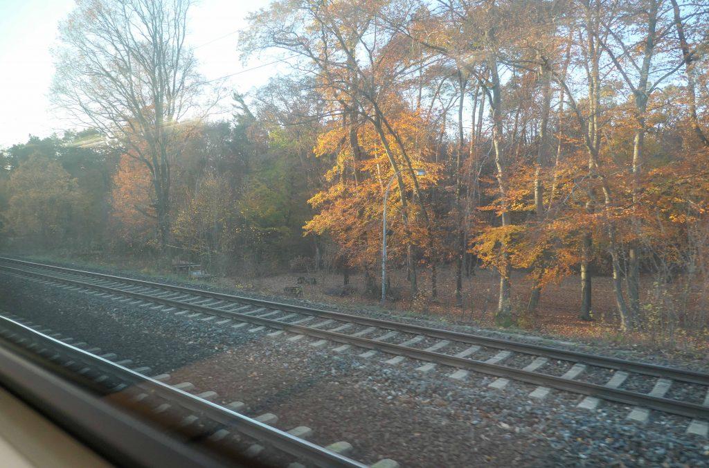 Utsikt fra et togvindu, tatt under en togferie utenom sesong.