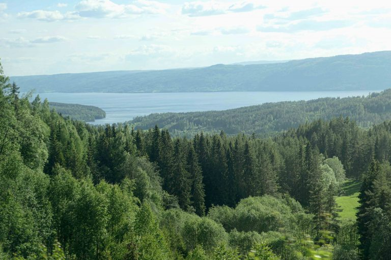 Randsfjorden sett fra Gjøvikbanen, på hjemturen etter en kort togferie Mjøsa rundt.