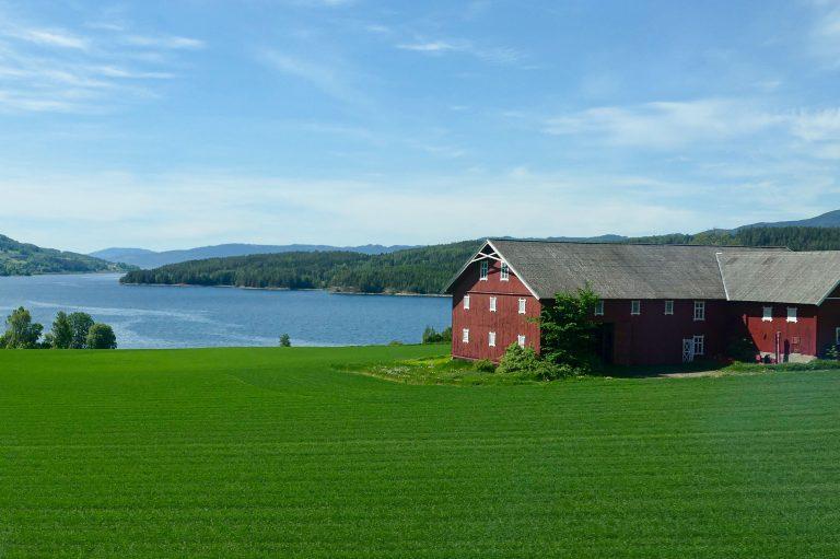 Utsikt fra vinduet på en kort togferie: Mjøsa og grønne åkre.